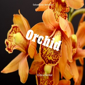 Orchid (Instrumental)